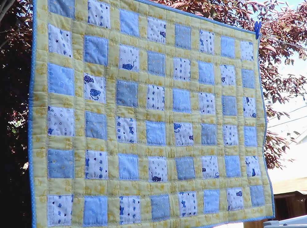Easy Flannel Baby Quilt Favequilts Com