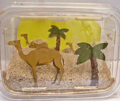 Desert In A Box Biome Diorama