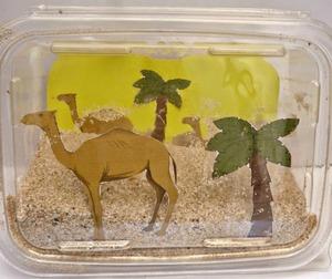 Desert In A Box: Biome Diorama | AllFreeKidsCrafts com