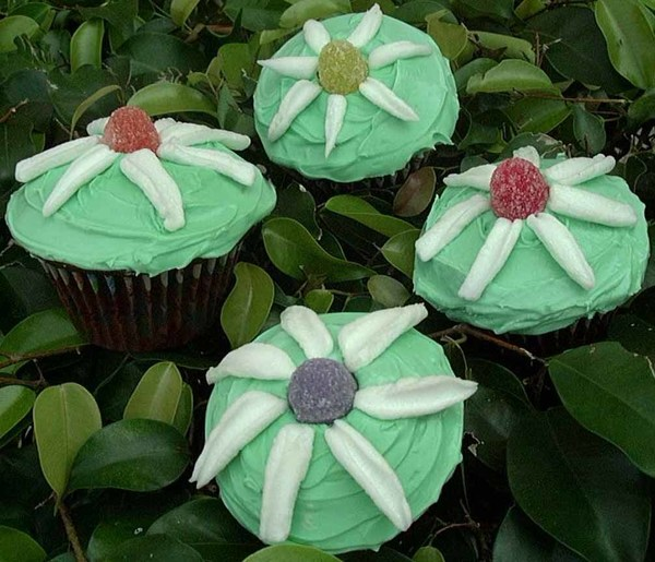 Bloomin Cupcakes