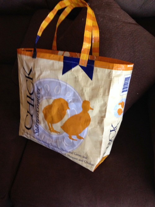 Rustic Upcycled DIY Grocery Bag