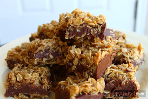 No-Bake Chocolate Oat Bars