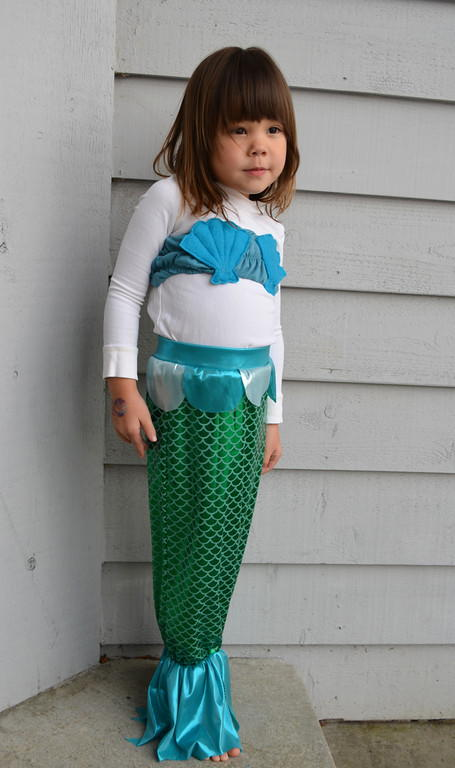 Homemade Mermaid Costume Pattern Allfreesewing Com