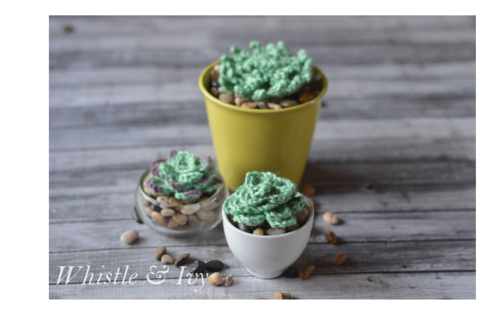 Quick and Easy Crochet Succulents
