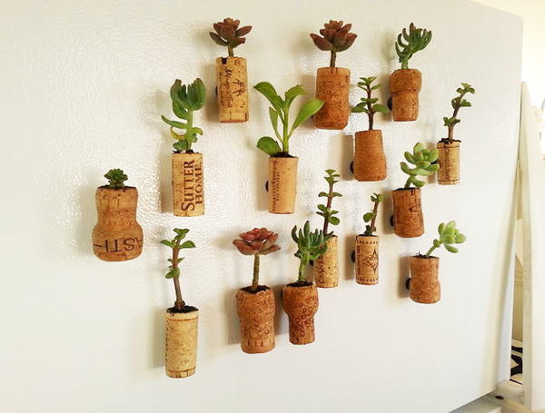Succulent Wine Cork Planter Magnets