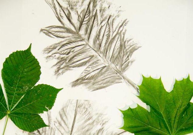 Charcoal Leaf Art AllFreeKidsCrafts