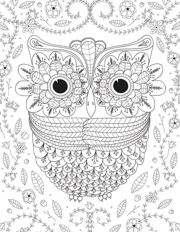 Big Eyed Owl Adult Coloring Page FaveCraftscom