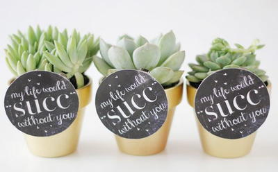 Punny Succulent Valentines Gift