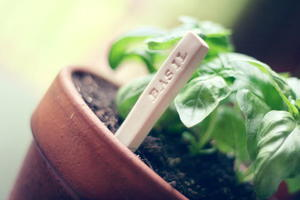 Cute Clay Garden Markers
