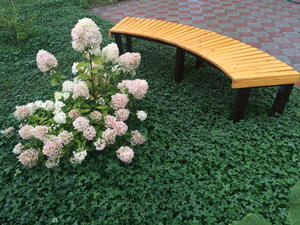 DIY Wood Garden Bench