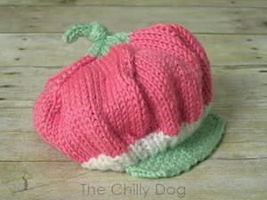 Baby Knit Strawberry Hat