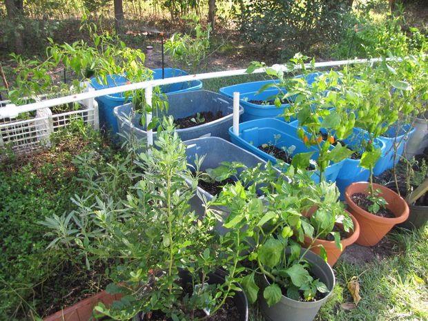 DIY PVC Garden Watering System | DIYIdeaCenter.com