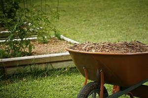 Tips for Preparing Your Garden for Growing Season