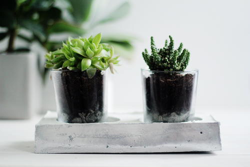 DIY Chrome and Concrete Garden Planter