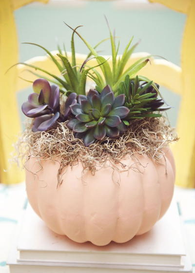 Faux Fall Succulent Pumpkin