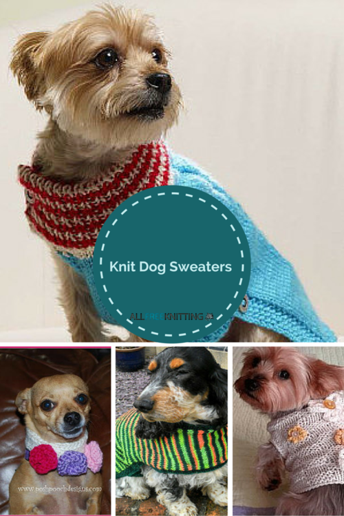 Knitting for Pets: 22 Knit Dog Sweaters