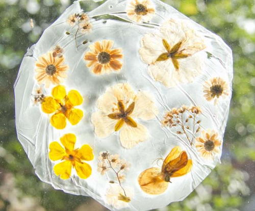 How to Make a Suncatcher With Real Flowers