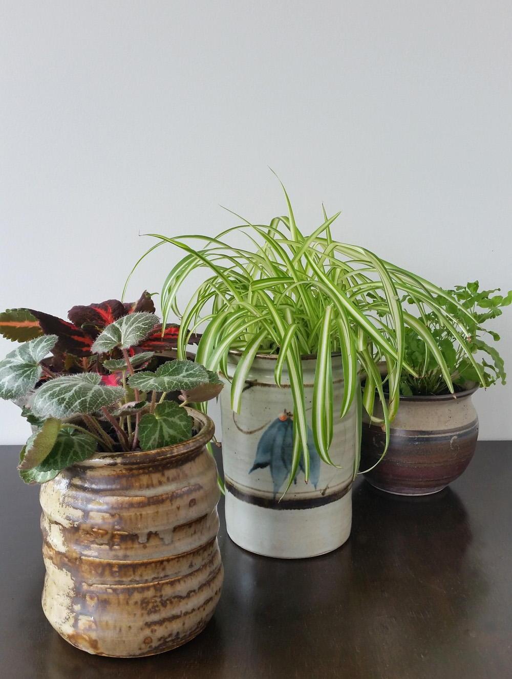 upcycled ceramic plant pots