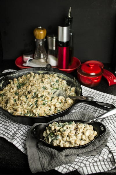 Creamy Mac and Cheese with Spinach