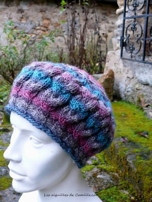 Twisted Braids Hat