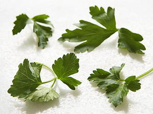 Parsley and Mint Soup
