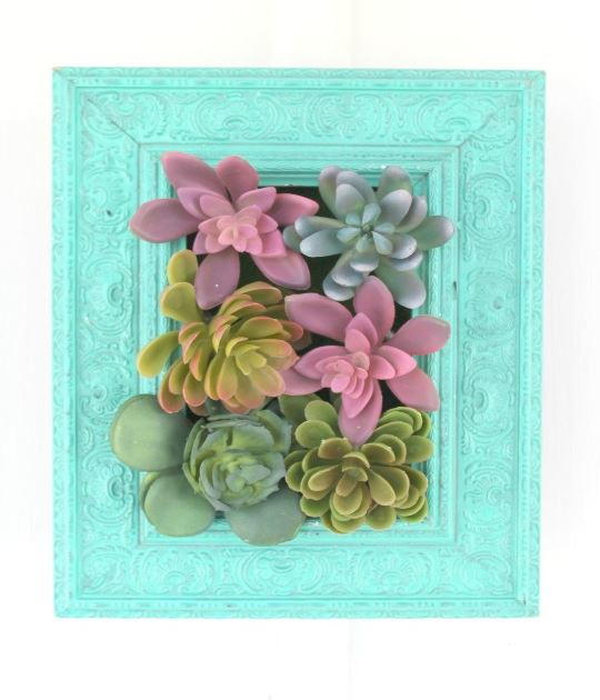 Cute Succulents Wall Hanging