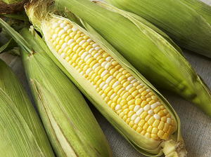 Beery Ears of Corn
