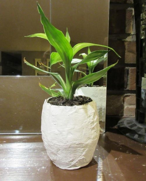 Papier Mache Pot for Plants