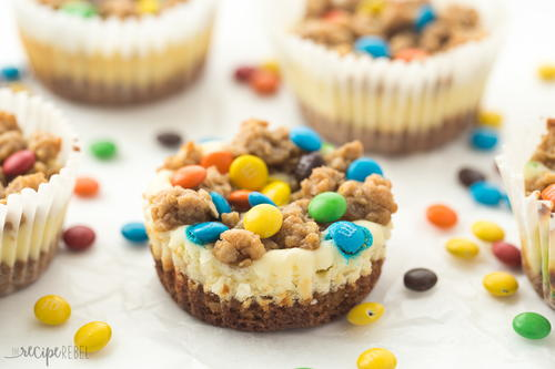 Gluten Free Monster Cookie Cheesecakes