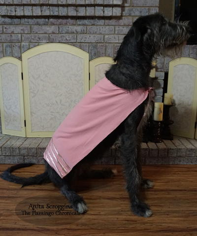 DIY Dog Cape