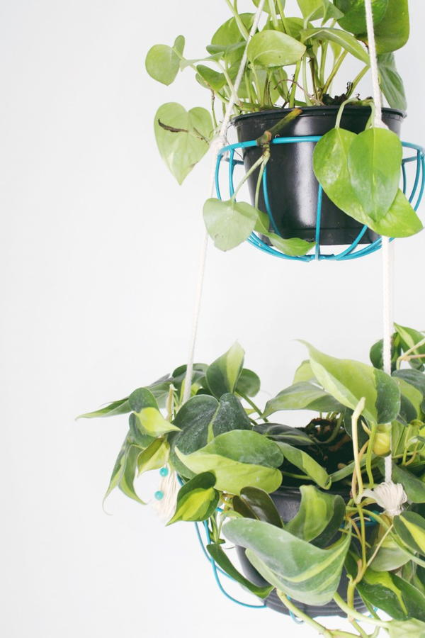 Bright DIY Hanging Planters