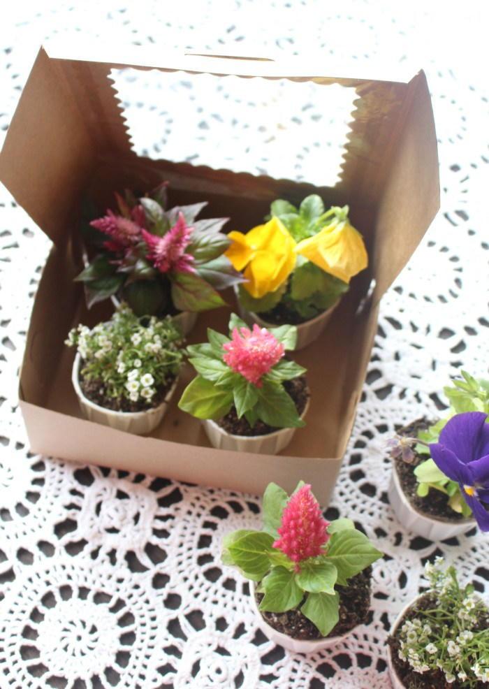 Mother 39 s Day Flower Fresh Craft AllFreeKidsCrafts