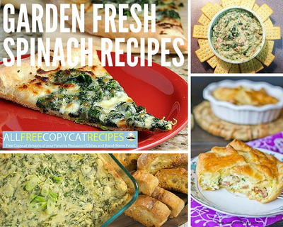 Garden Fresh Spinach Recipes