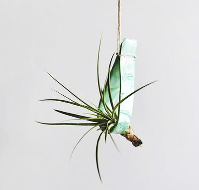 Marbled Clay Plant Hanger