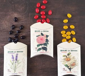 Flower Seed Packet DIY Favor Boxes