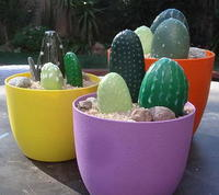 Pretty Painted Cacti