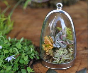 Living Terrarium Necklace