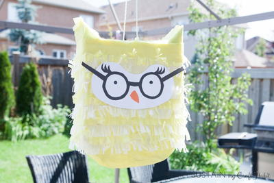 Birthday Owl Party Pinata