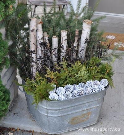 Christmassy Outdoor Planter Arrangement