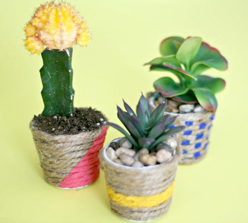 Colorful DIY Mini Planters