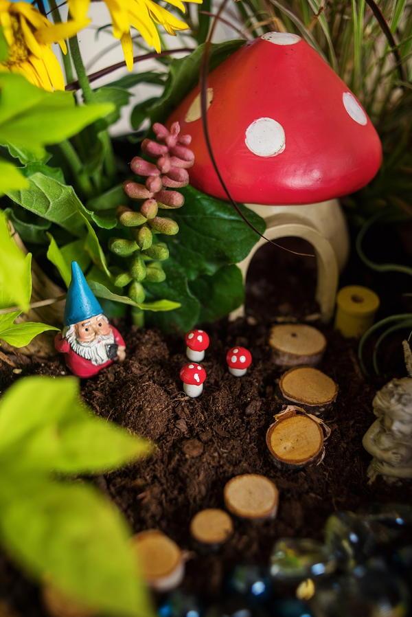 How to Make a Fairy Garden   FaveCrafts com