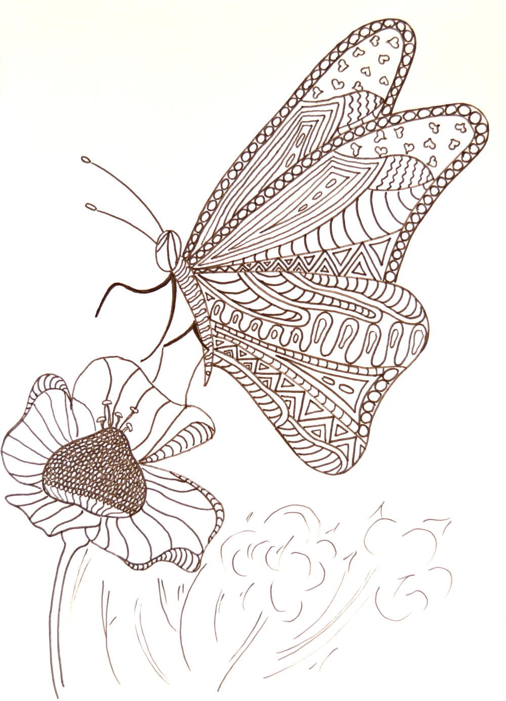 Hungry butterfly adult coloring page for Coloring pages of butterflies for adults