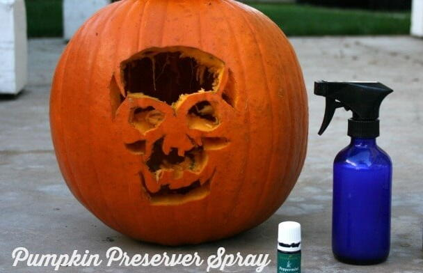 How to Preserve Carved Pumpkins