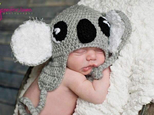 Koala Baby Hat Pattern Favecrafts Com