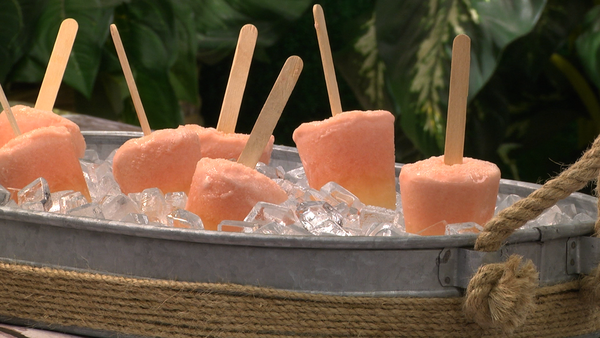 Dreamy Orange Ice Pops