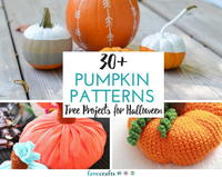 30 Pumpkin Patterns: Free Projects for Halloween