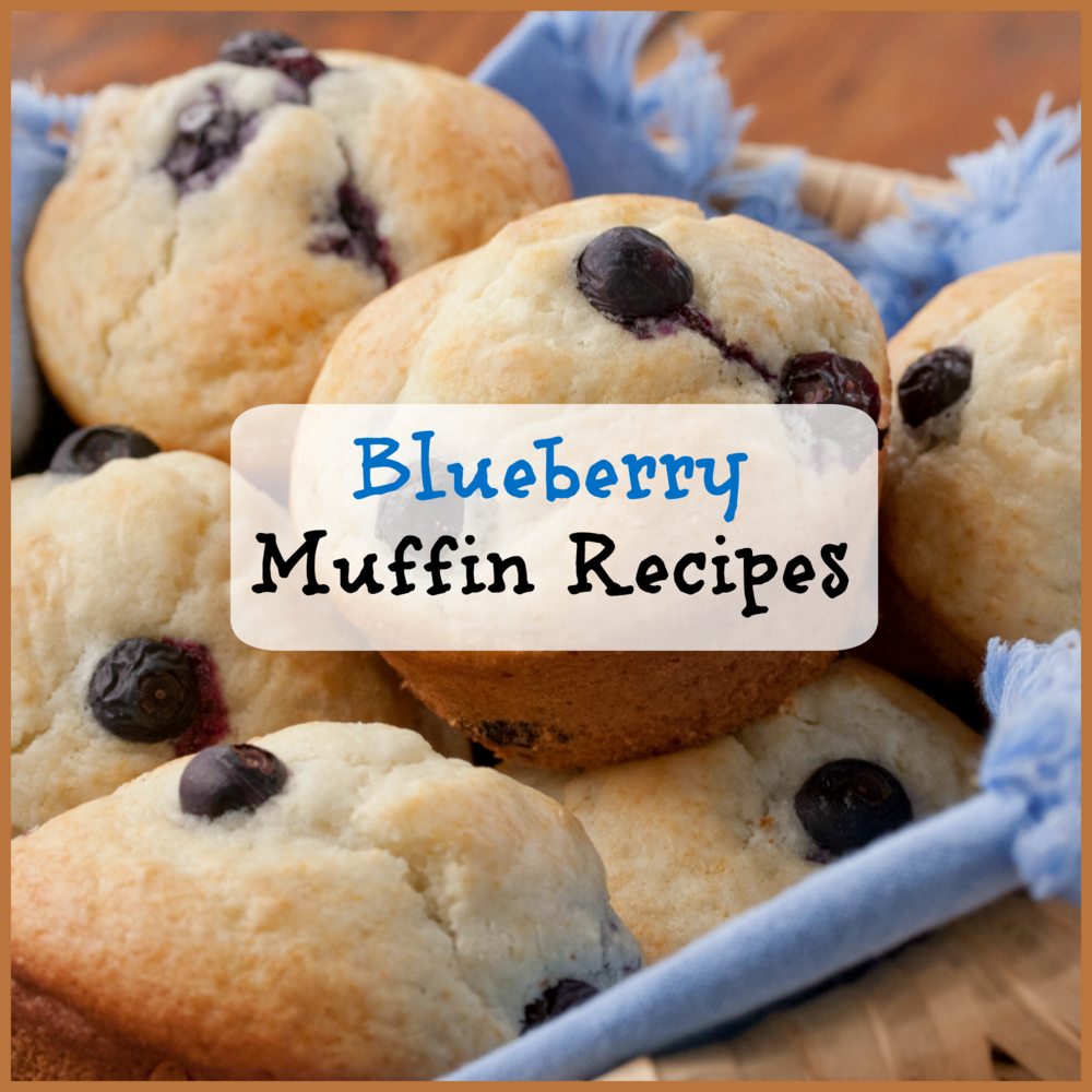 Our Best Blueberry Muffin Recipes Plus Bonus Blueberry