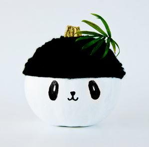 Panda Pumpkin Project for Kids