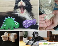 20 Purrfect Pet Projects for Your Furry Friends