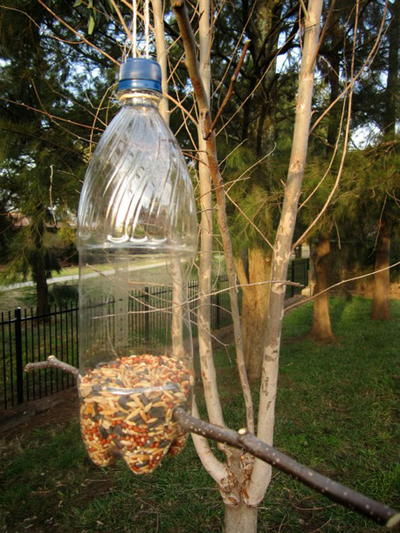Creative Recycled DIY Bird Feeder